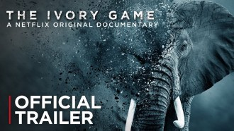 The Ivory Game Bande-annonce VO