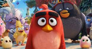 Angry Birds : Copains comme cochons photo 4