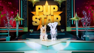 Pup Star: World Tour Bande-annonce VO